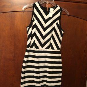 NWT- Loft sleeveless black/white dress